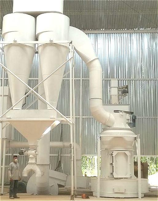 Pendulum Roller Mill